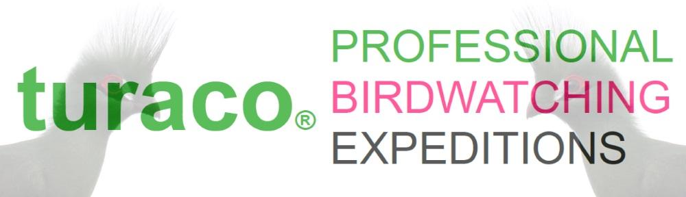 Turaco Birding